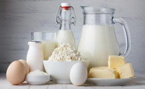 dairyproducts2
